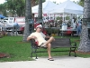 01. Fort Pierce farmers market bench: December 15, 2007