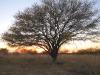 Lake Amistad Texas Sunset