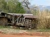 Farn carts El Rancho de las Golondrinas