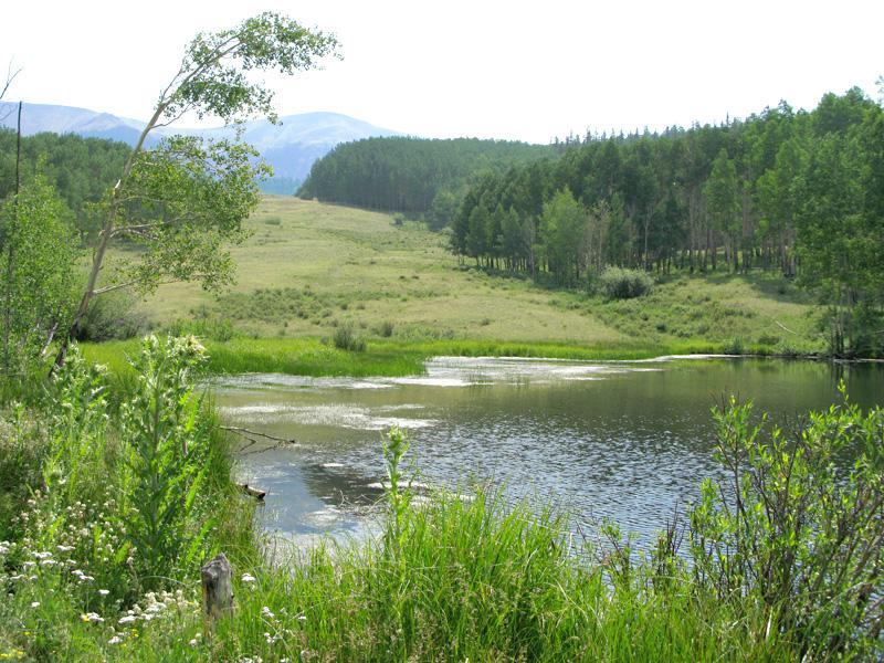 Vickers Ranch Lake City private fishing lake