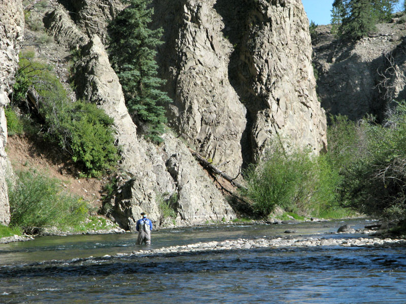 lake fork of the gunnison river fishing lake city, co