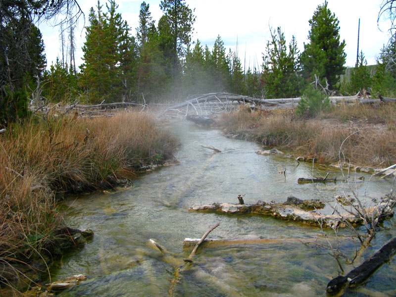 Hot springs in Yellowstone National Parki
