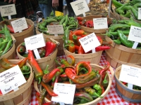 Fresh chili peppers at Portland farmers market