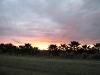 Florida sunset over White Rabbit Acres