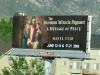 Resistance is Futile at the Salt Lake City Utah Morman Church Pageant
