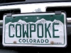 Colorado Cowpoke Vanity License Plate