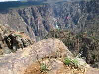 Overlooking Chasm at Black Canyon National Park