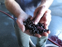 Dunham Cellars Walla Walla Washington Winery