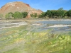 Thermopolis Wyoming Worlds Largest Hot Springs