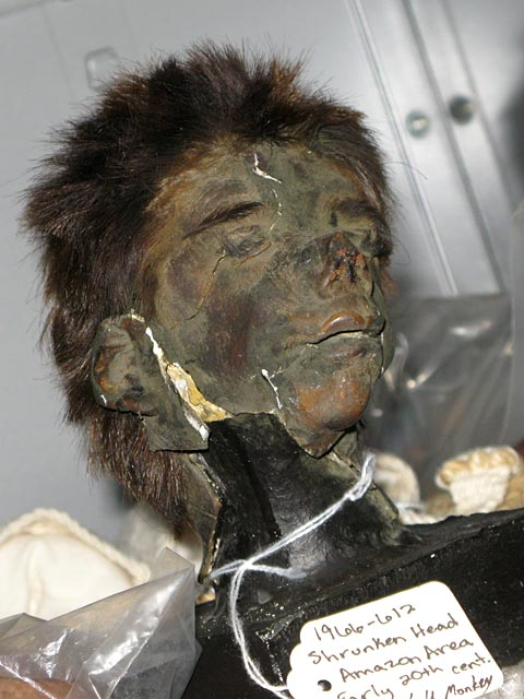 Shrunken Head, University of Missouri Collection