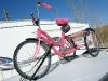 Fuzzy bike on Fernley, NV pop-up trailer at Desert Rose