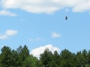 Bald Eagle Soars over Red Feather Lakes, CO