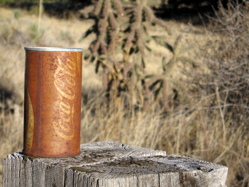 Old Coke Can and Cacti in New Mexico