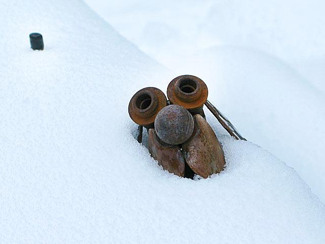 Snow Dog Garden Art at Jerry's Acres