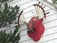 Hammer Museum Haines, Alaska