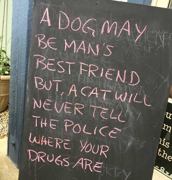 Man's Best Friend?