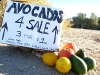 Rene's Slab City Fruit Stand