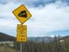 Slumgullion Pass Lake City, CO