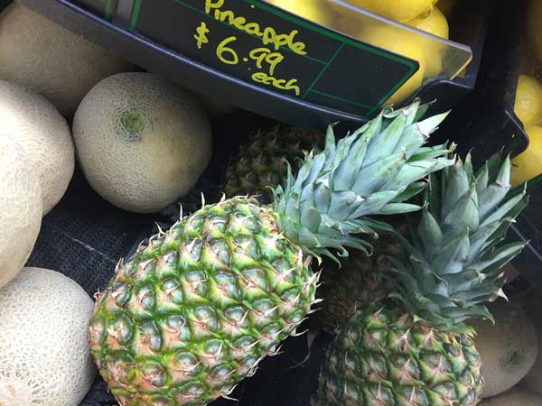 Seven Dollar Pineapple in Watson Creek, BC