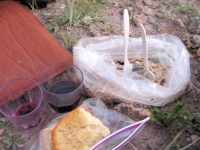 Camping dinner of leftover pasta and Three Legged Red wine