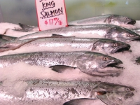 King Salmon at Pikes Place Market Seattle