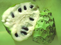 Cherimoya Tropical fruit from Borrego Springs market
