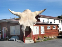 Dubois Laundry Cow Skull Entrance