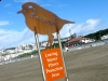 Snowy Plover Protection Sign Ocean Beach San Francisco CA