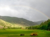 Rainbow over Vickers Ranch Horse Pasture
