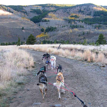 Full-time RVing, Mobile RV Satellite Internet, broadband, mushing, sled dogs, Colorado