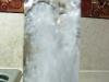Fizzini Soda Water Bottle