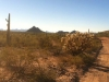 Ajo Arizona Backroads