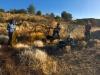 Camping World video shoot with IAMVideo in Sedona, AZ
