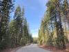 Mt Shasta Ski Park Road