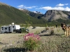 Free Boondocking along Petersen Creek in BC, Canada