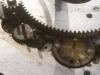 RVDataSat Skew Gears
