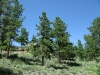 Dream Mountain Property Acreage View