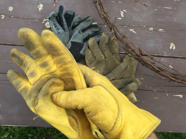 Best Ranch Workamping Gloves