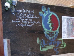 Halcyon Definition Slab City Library