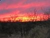 Apocalyptic Sunset Over Elfrida Arizona