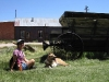 Checking Out the Ghost Town of Bodie, CA