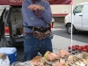 Troy New York Farmer's Market