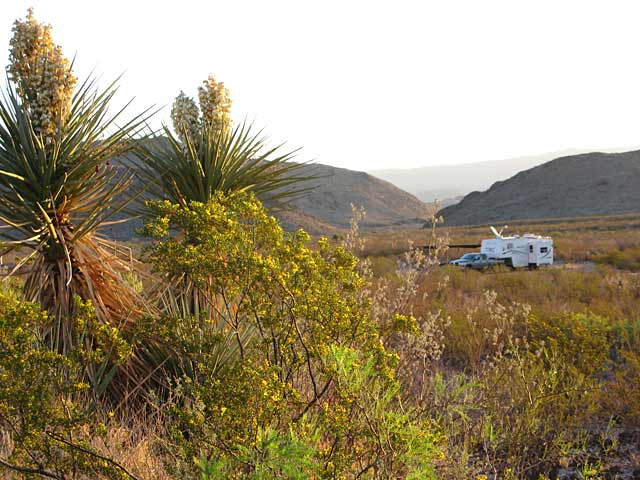 Free Boondocking in Black Gap WMA Big Bend Texas