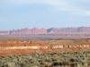 Goosenecks Utah State Park High Desert