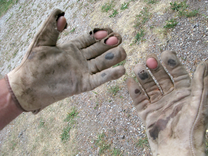 Work Gloves after Ranch Workamping
