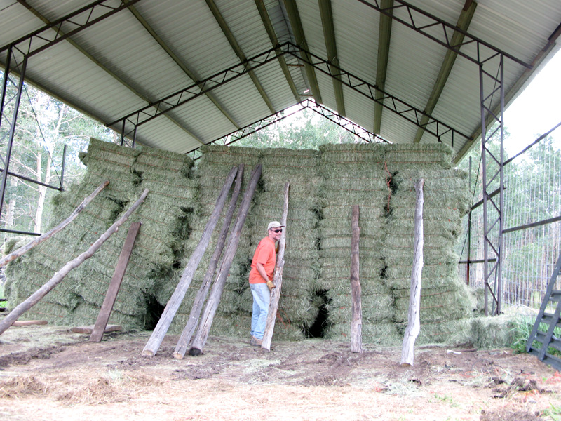 A half full hay barn is a job half done