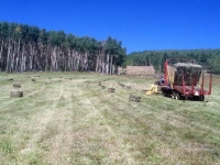 Vickers Ranch Workamping