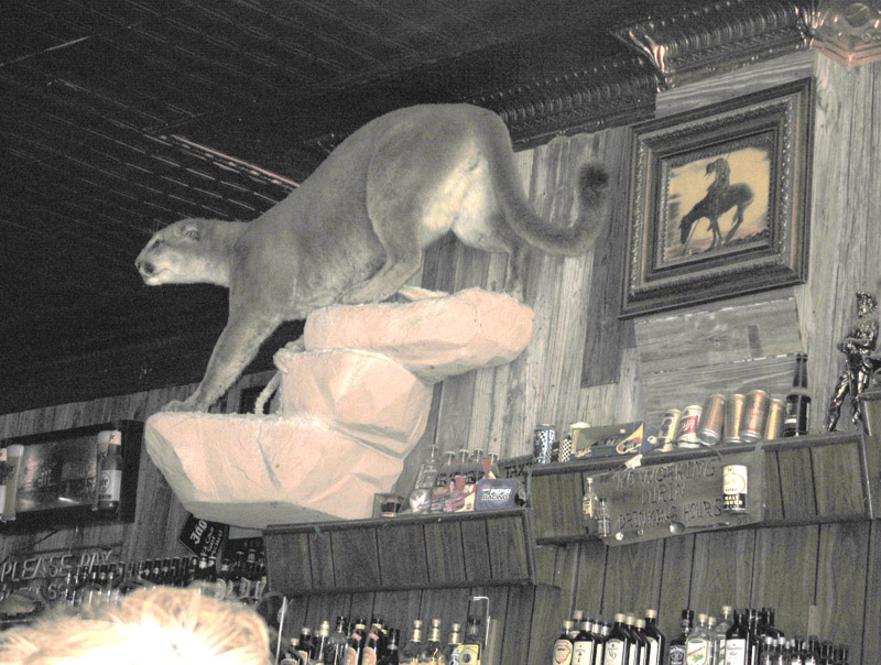 Classic Old Bar Decor