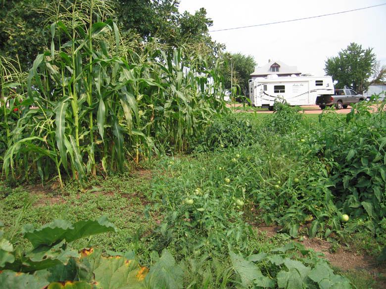 Produce Farm, Colby WI