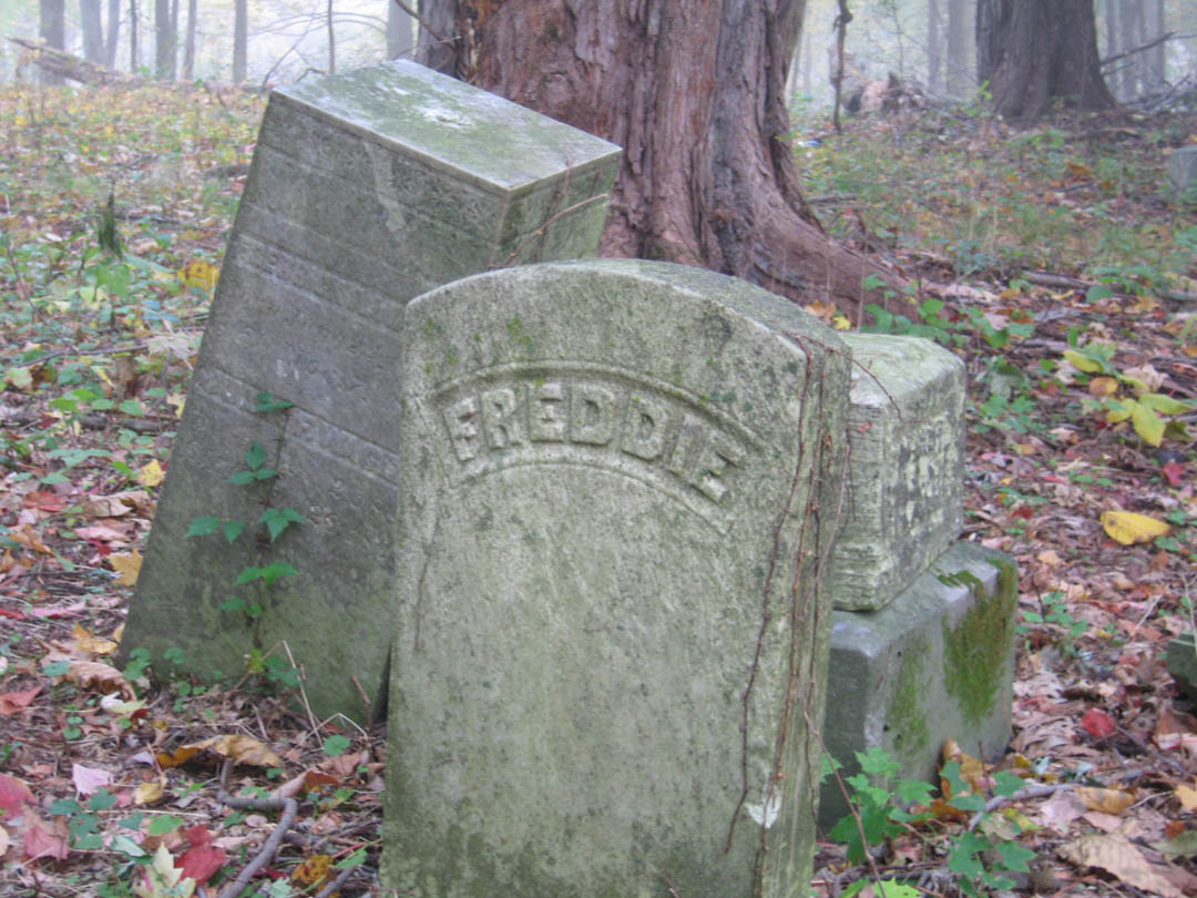 cemetery in the forest - photo #32